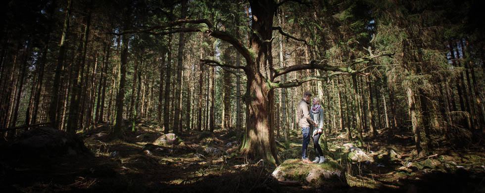 Peter & Maria Pre-Wedding Shoot Backa Loge - Provfotografering inför bröllopet vid ett coolt träd