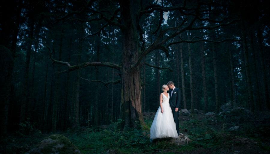 Bröllopsfotog i skogen på natten