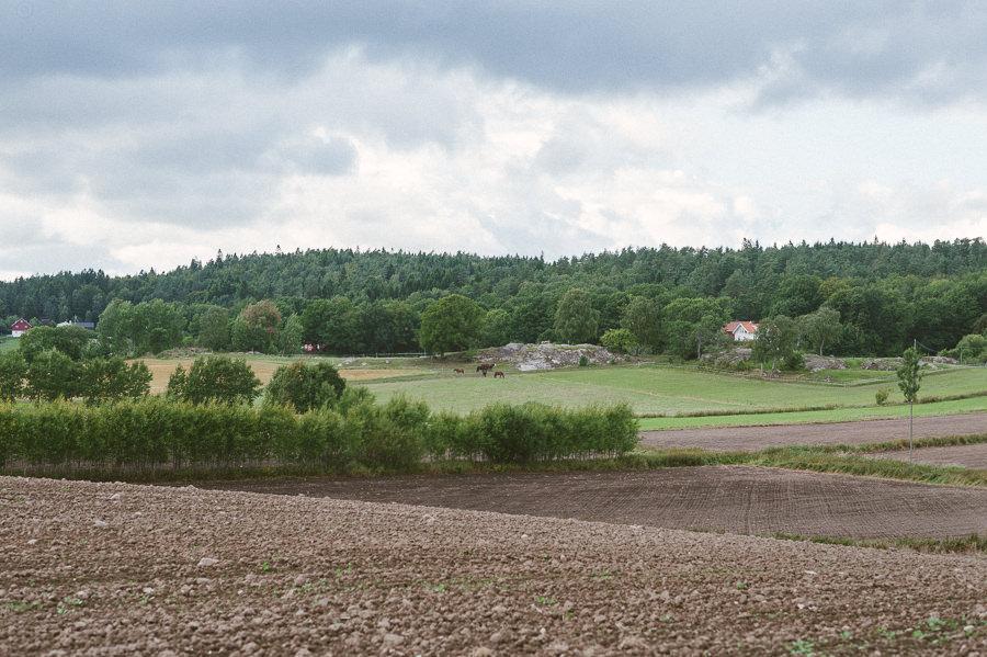 bröllopsfoto i Gråbo, Göteborg - miljöbild landskap
