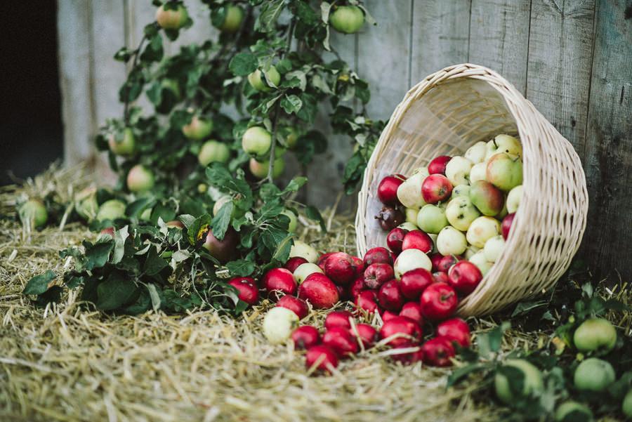 lantligt bröllop i lada i Gråbo, Göteborg- detalj äpplen