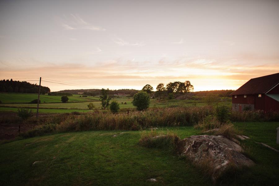 fotograf Gråbo - lantligt bröllop landskap solnedgång