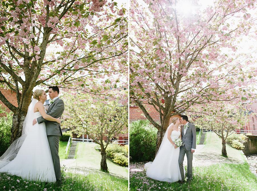 Brudparet kysser varandra under körsbärsträd vid Nääs Fabriker utanför Göteborg